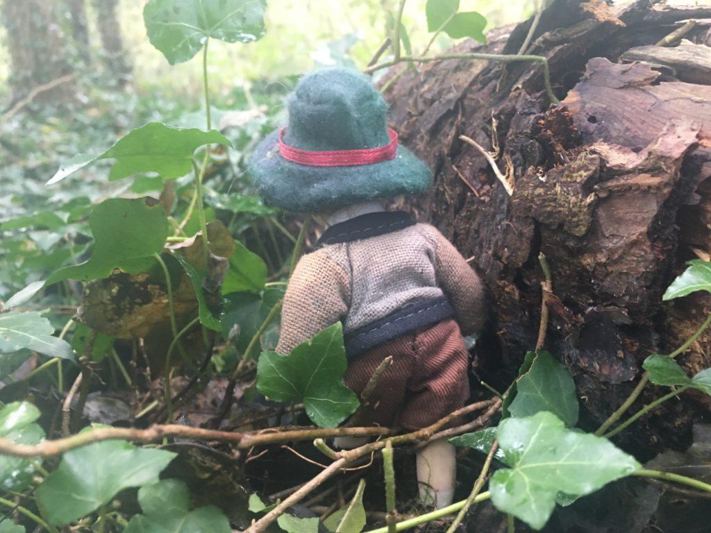 Kinder im Wald ; Natur